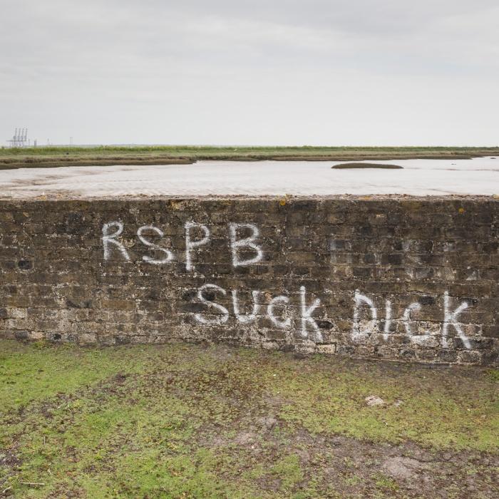 RSPB Suck Dick, Hoo Peninsula.