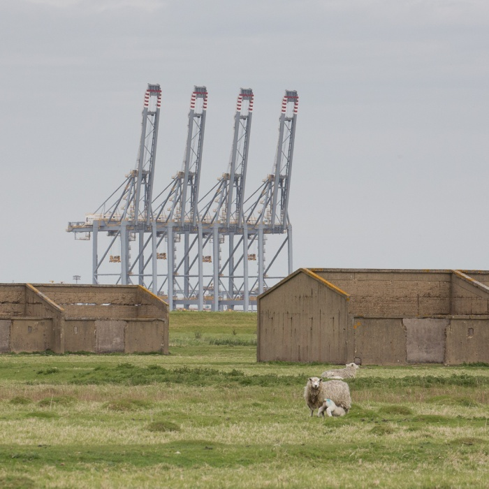 Cliffe explosives works V, Hoo Peninsula with London Gateway Port.