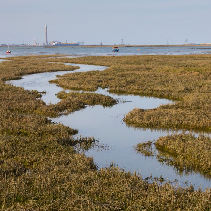 Twinney Saltings, River Medway and Kingsnorth power station.