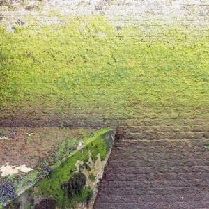 Sea Wall II. Kingsgate Castle.