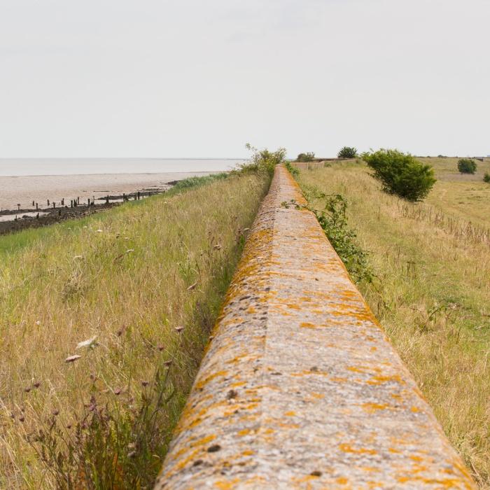 Flood Wall, Nagden Marshes.