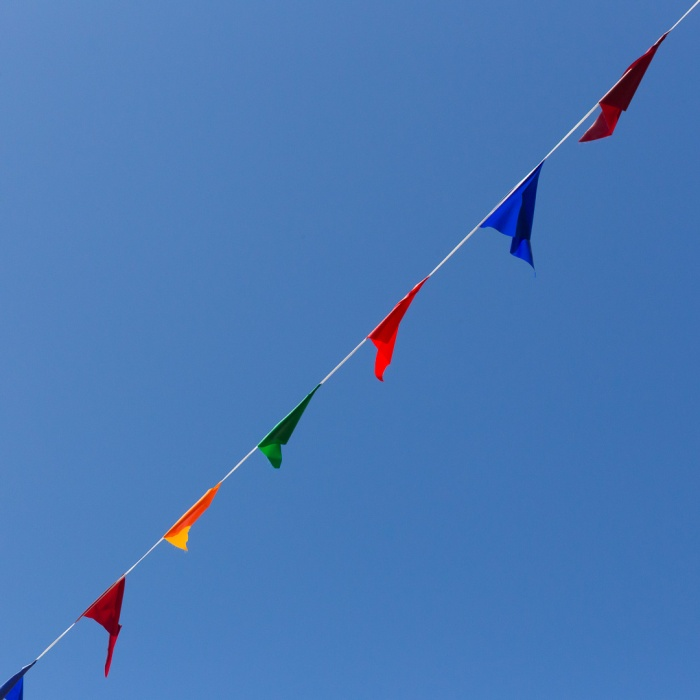 Bunting, Hastings, Sussex.