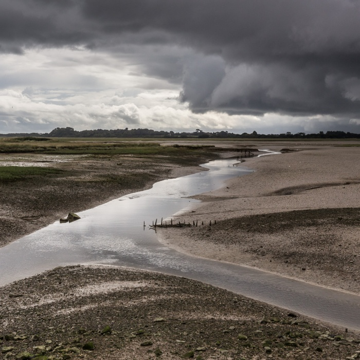 Pagham Harbour III, Sussex.