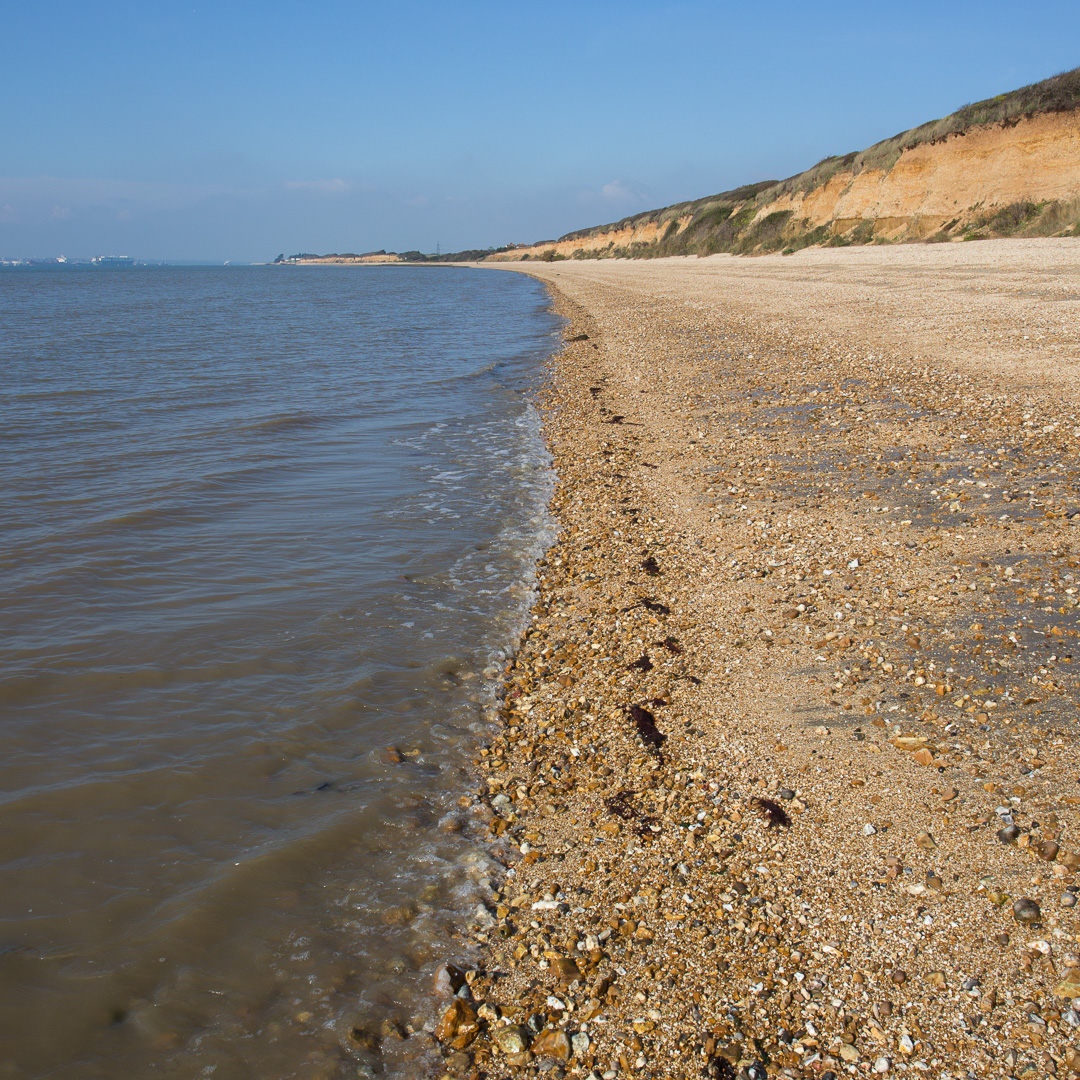 Shore at Brownwich Cliff, Hampshire