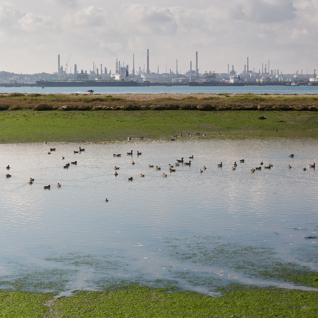 Fawley Oil Refinery from Hook Park, Hampshire.