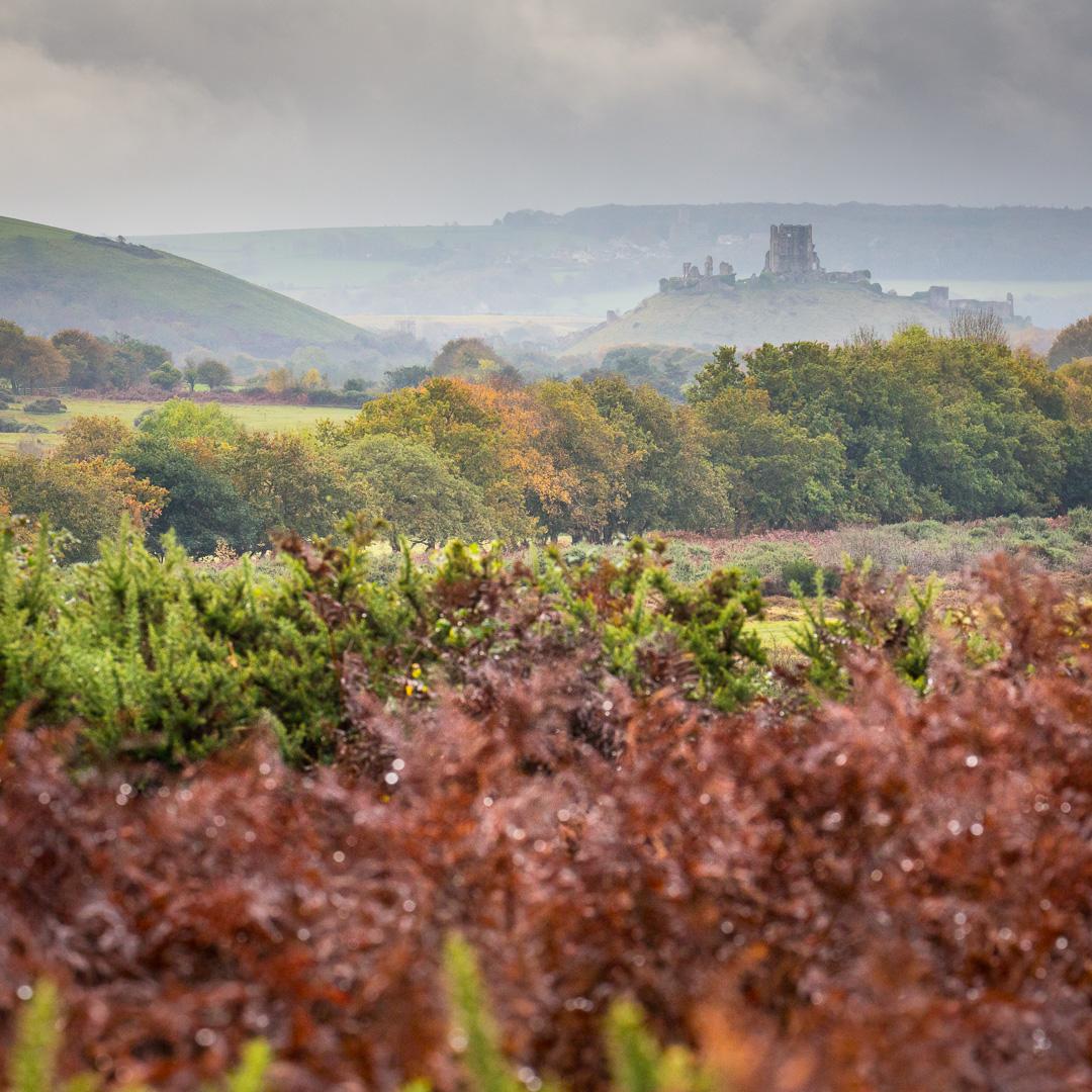 Corfe Castle, Purbeck, Dorset.