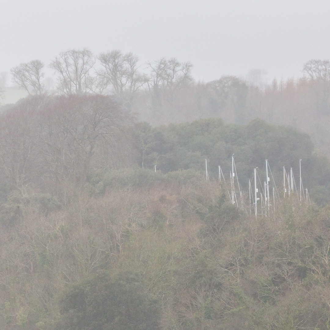 Masts, Waddeton Quarry, Devon.