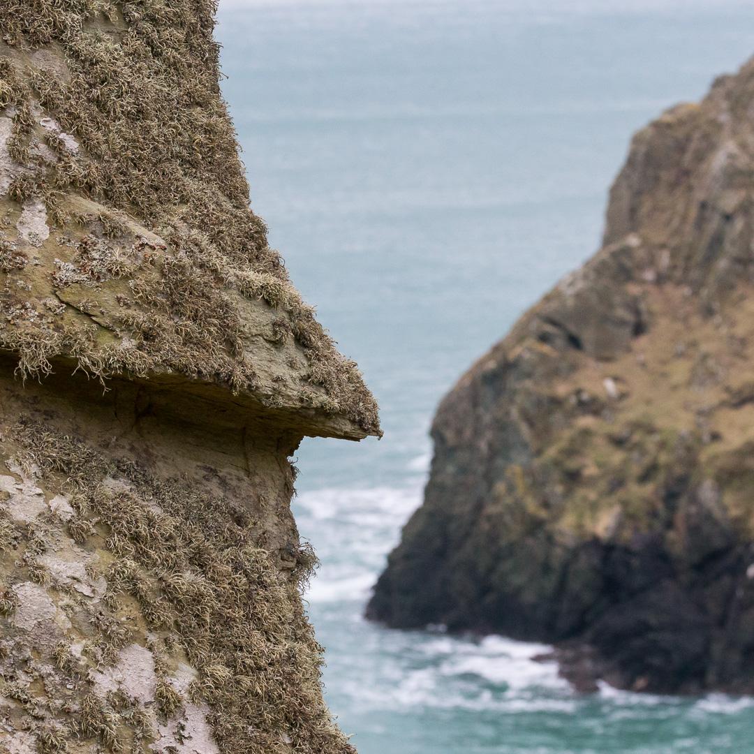 Gammon Head, Devon.