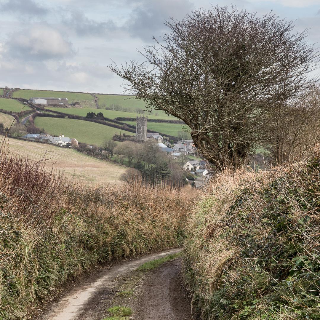 Lane to South Pool, Devon.