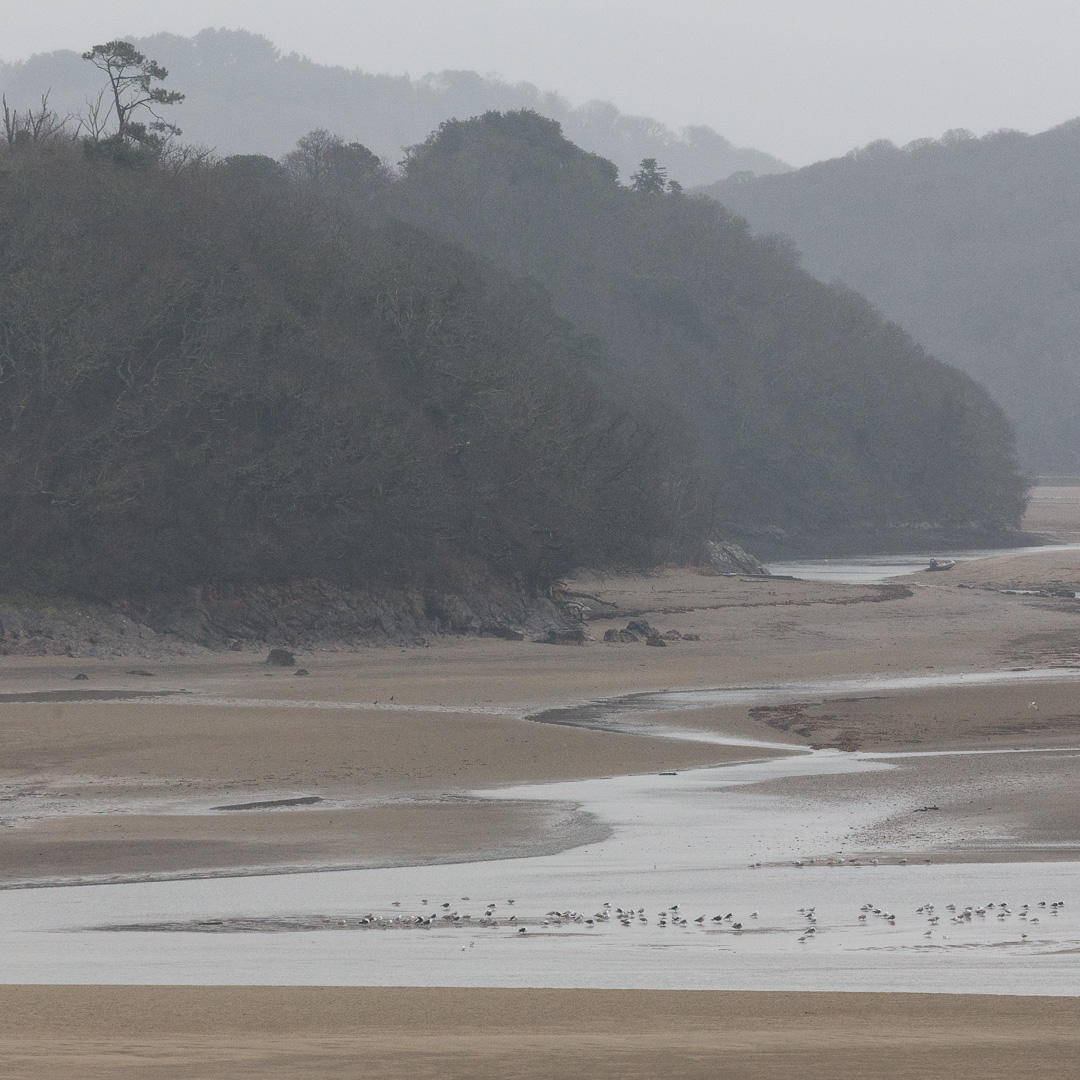 River Erme at low tide, Devon.