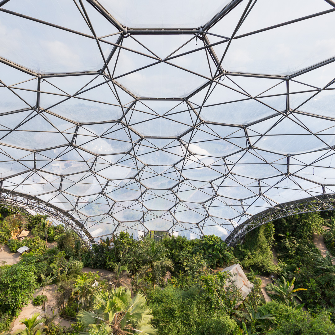 Internal Structure Rainforest Biome Eden Project Cornwall