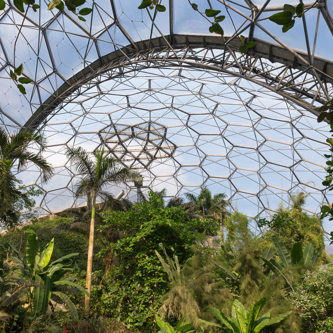 Rainforest Biome showing vents, Eden Project, Cornwall.