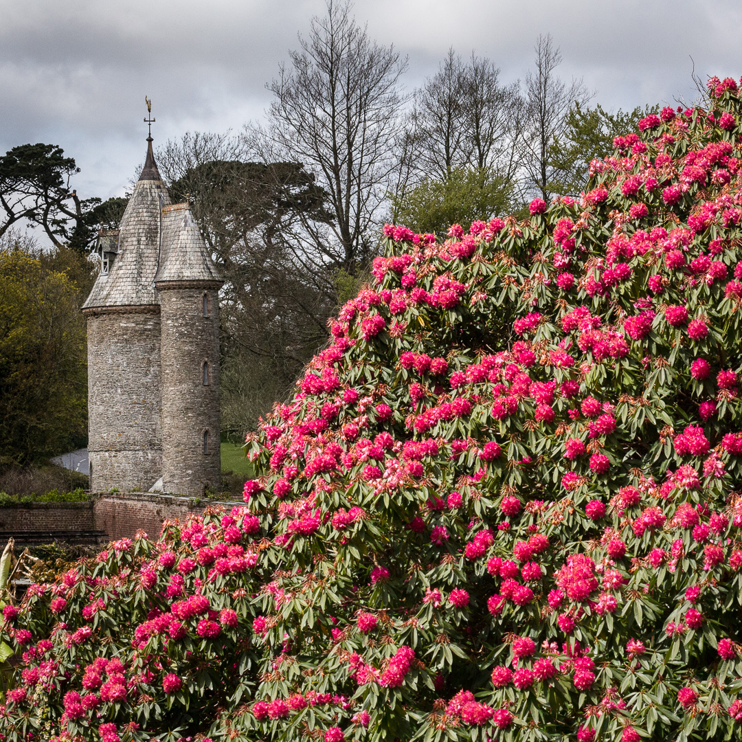 The Water Tower, Trelissick Gardens, Cornwall.