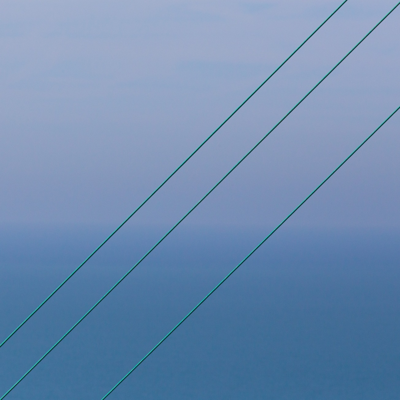 Power lines, the Warren, overlooking the Strait of Dover.