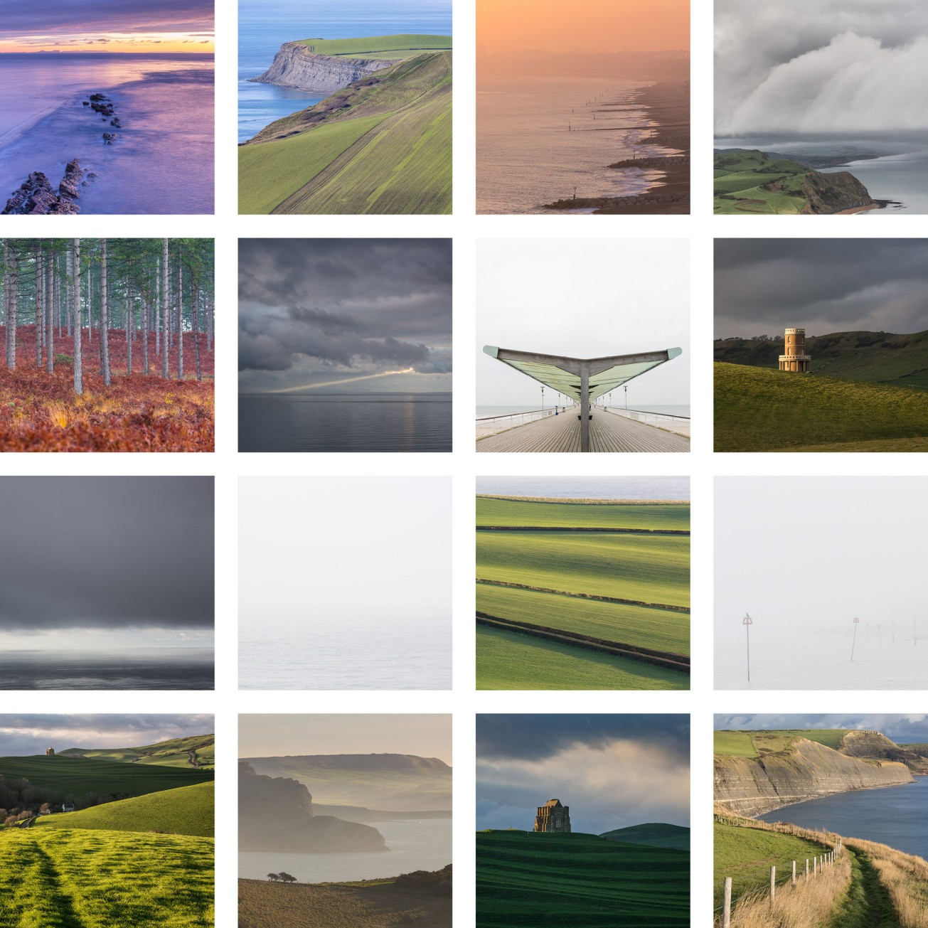 05 Dorset Matrix crop