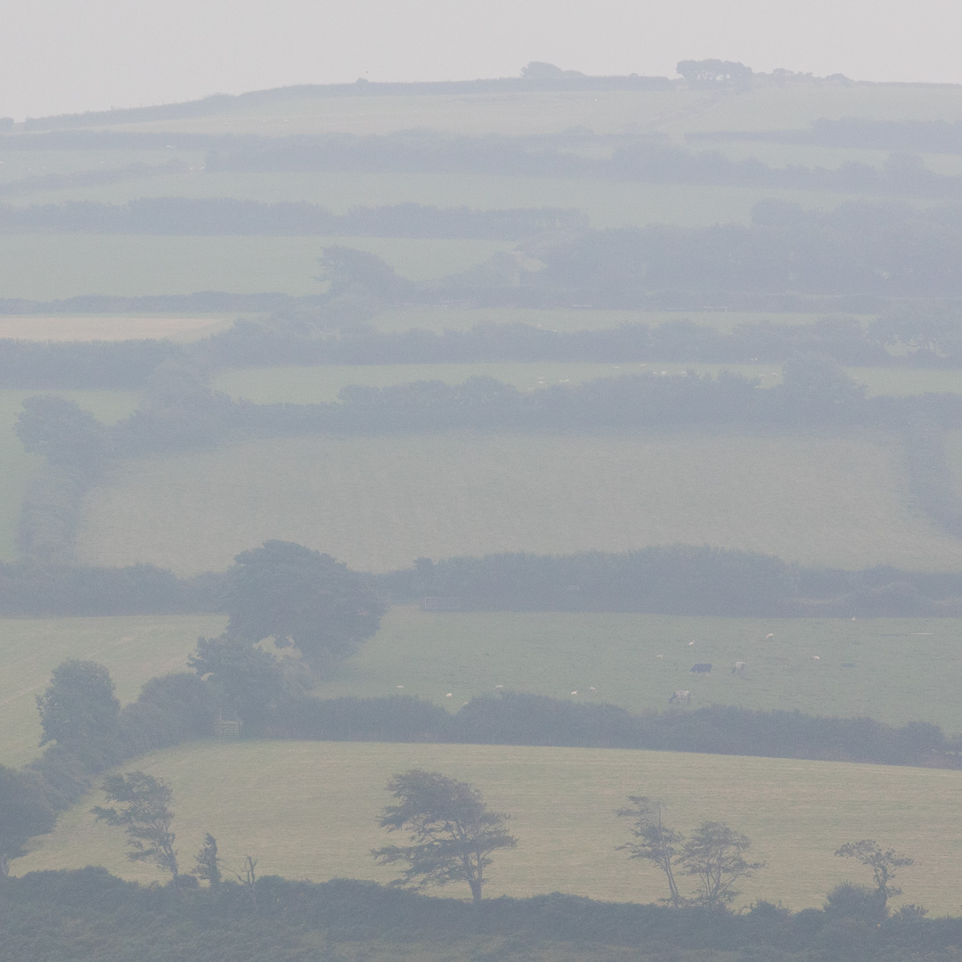 Exmoor fields from Holdstone Down, Devon.