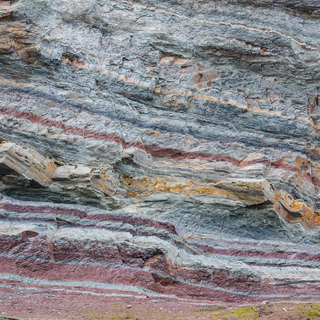 Lower lias sedimentary rocks, Watchet, Somerset.