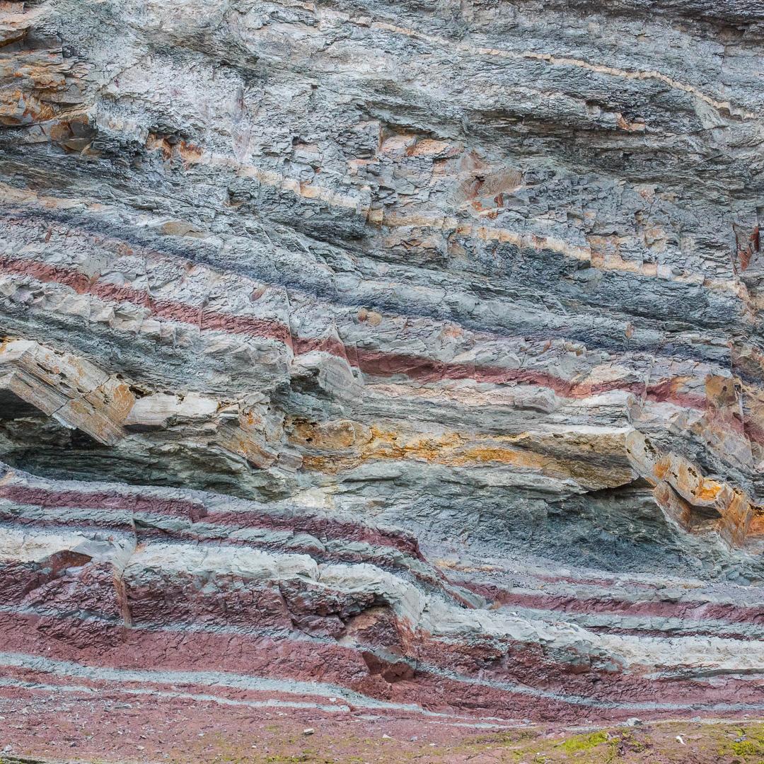 Lower lias sedimentary rocks, Watchet, Somerset.