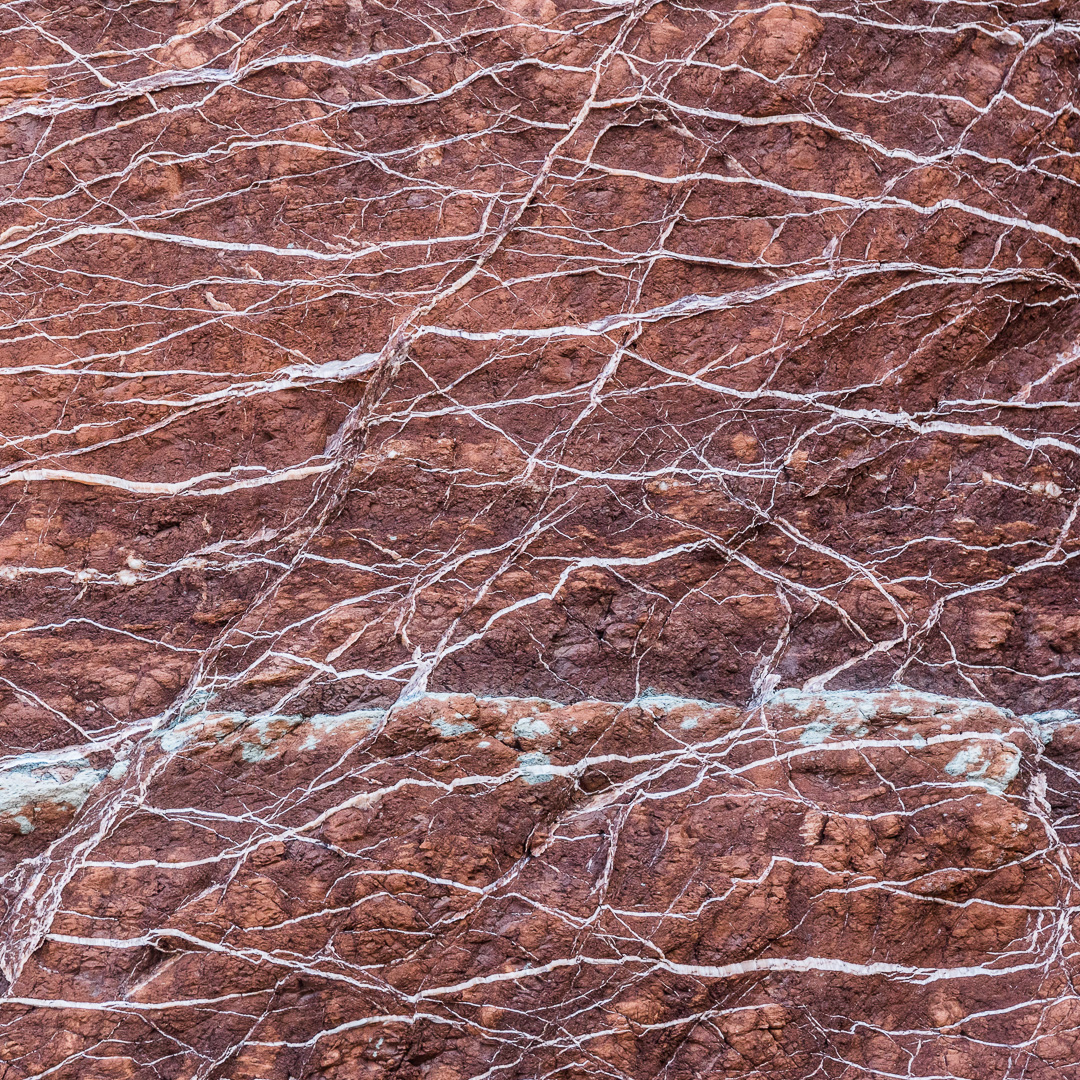 Gypsum veins in Mercia Mudstone, Watchet, Somerset.
