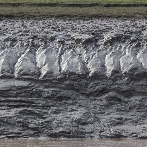 River Parrett mud II, Somerset.