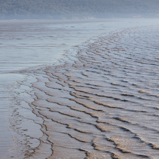 Low tide, Sand Bay, Avon.