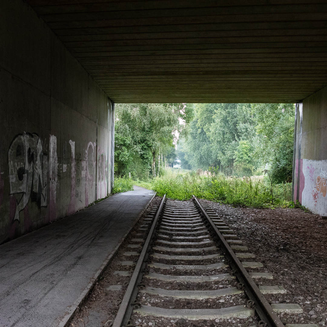 Disused railway under the M5, Avon.