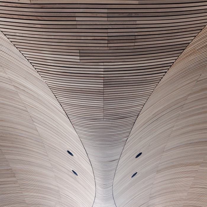 Cedar wood ceiling inside the National Assembly for Wales, Cardiff Bay. Architect: Richard Rogers Partnership.