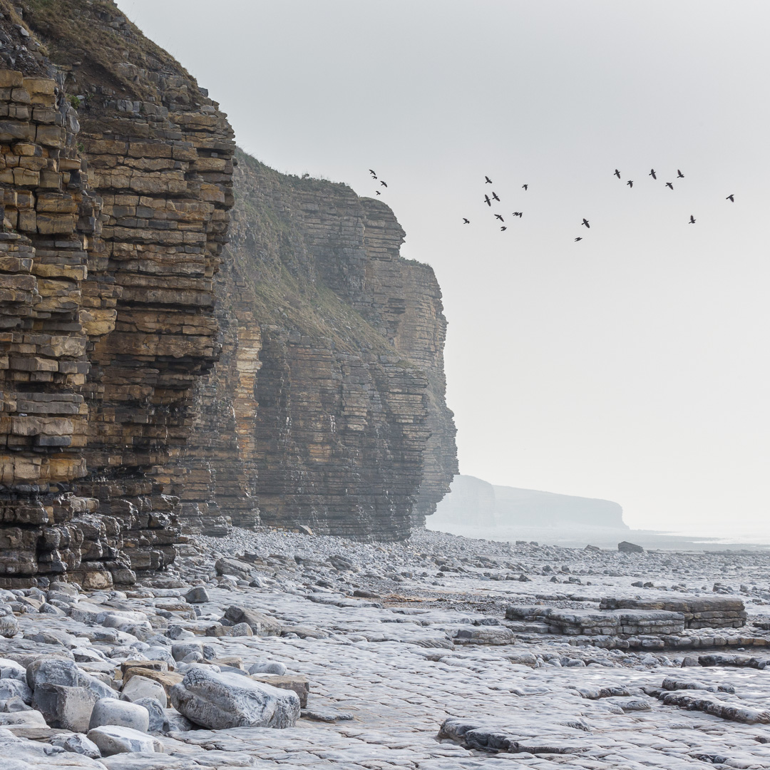 Cliffs at Col-huw point, Llantwit Major, Glamorgan.
