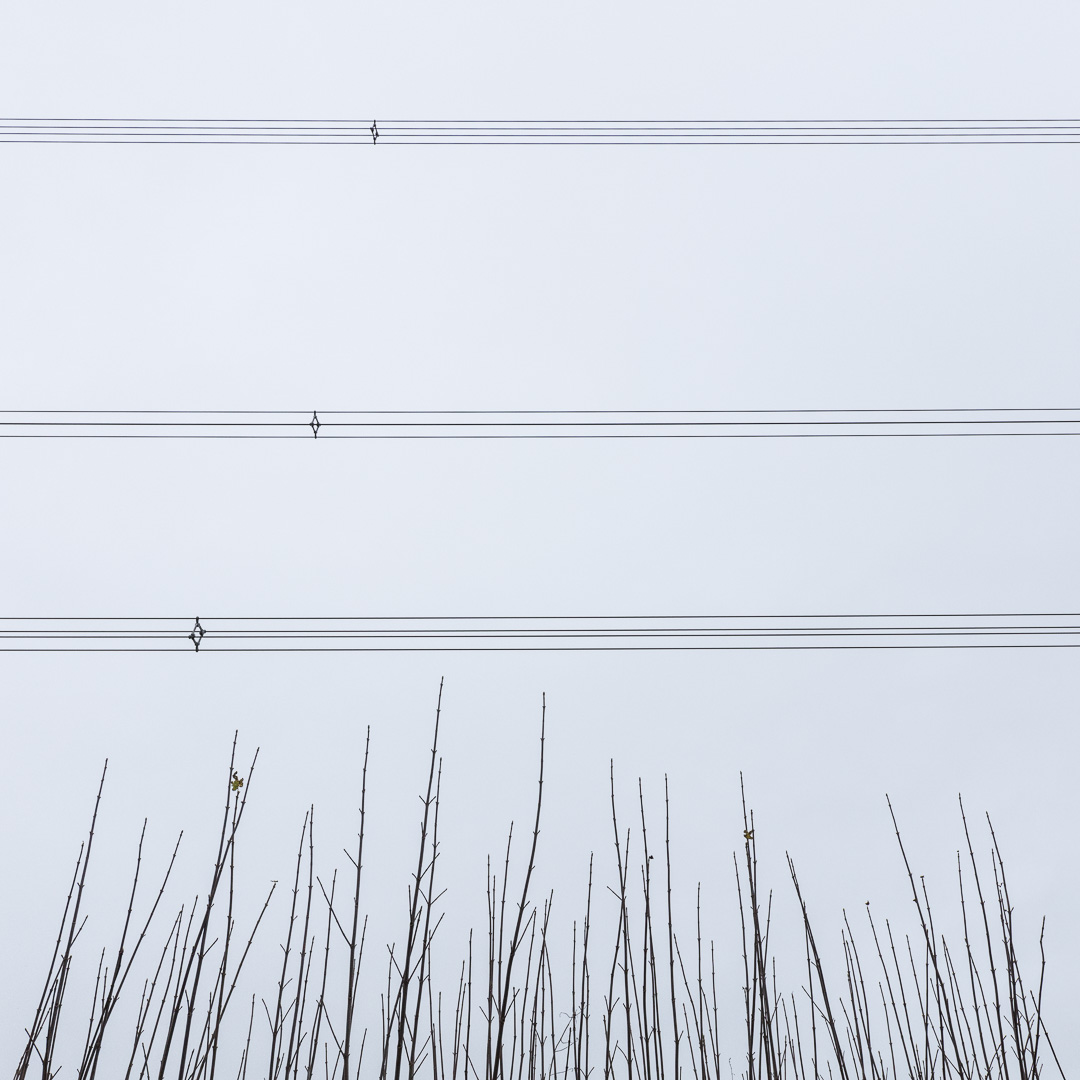Overhead power lines, near Llangain, Gwent.