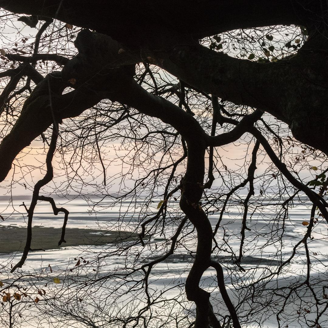 River Taf at dawn, Laugharne, Dyfed.