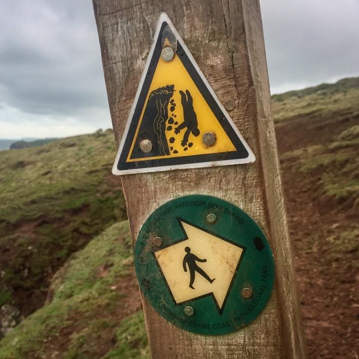 Decisions, decisions, Castles bay, Pembrokeshire.