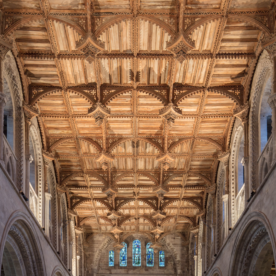 Irish oak ceiling above the nave, constructed between 1530-40, St David's Cathedral, Pembrokeshire.