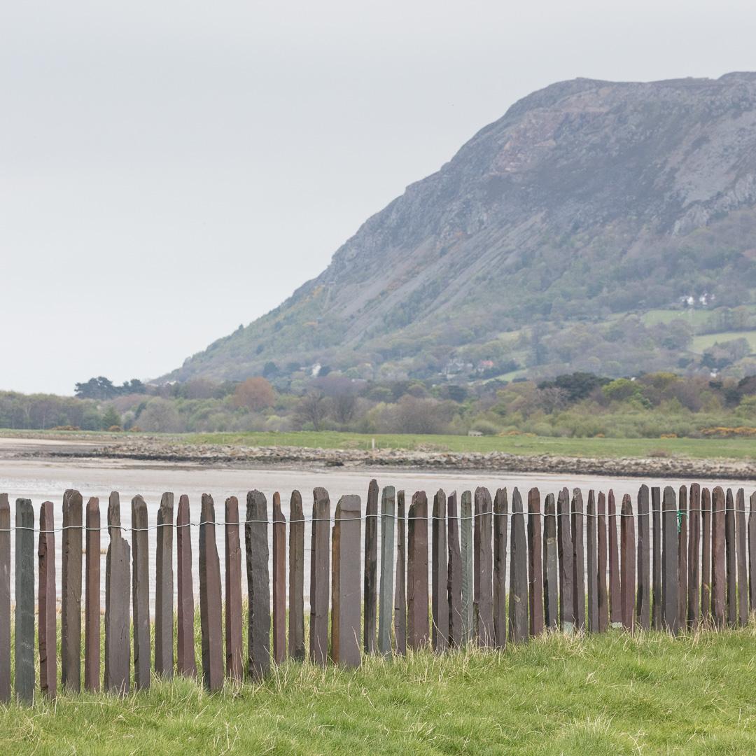 Slate fence, Penmaen Mawr, Conwy.